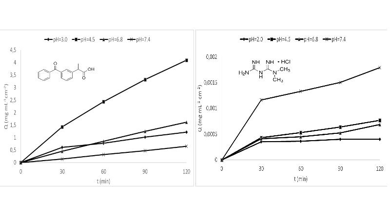 In vitro pH dependent passive transport of ketoprofen and metformin