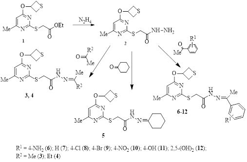 2-[6-methyl-4-(thietan-3-yloxy)pyrimidin-2-ylthio]acetohydrazide derivatives